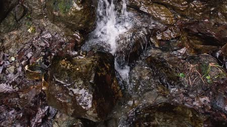 Shooting a waterfall in forest. Reserve. Park