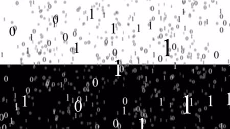 párhuzamos : Binary code in cyberspace. Black background and white background. Animated matrix. Stock mozgókép