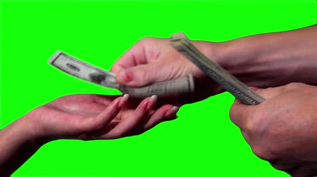 loans : Close-up of money in the hands Stock Footage
