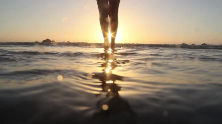 ślady stóp : Beautiful female legs in the surf at sunset. Wideo