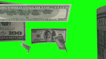 dolar : $ 100 bills fly away from the screen and disappear in the distance.