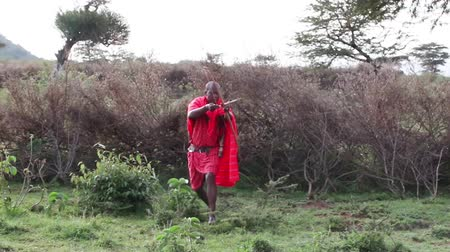 av : Maasai warrior hunting with a bow.