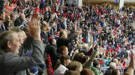 вентилятор : Fans happily stand up from their seats when the team scores. Стоковые видеозаписи