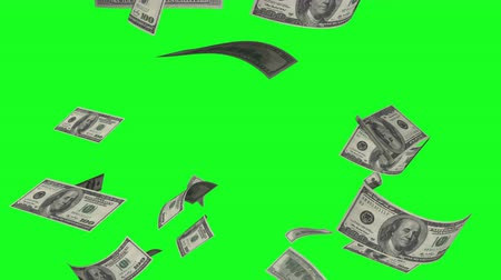 Banknotes slowly fall down on a green screen. Stock Footage