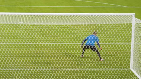 Soccer goalkeeper catches the ball during training. Stock Footage