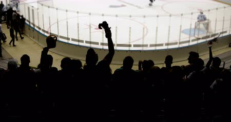 Silhouettes of wild fans jumping in a hockey stadium.