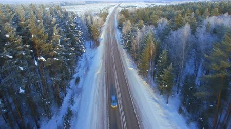 aerial survey of winter forest