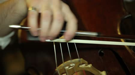 жить : playing the cello close up. musician playing the cello Стоковые видеозаписи