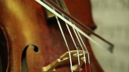 cselló : playing the cello close up. musician playing the cello Stock mozgókép