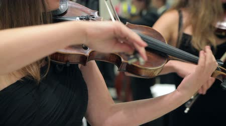 cselló : Musician Playing The Violin Bow in The Orchestra