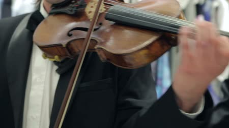 симфония : Musician Playing The Violin Bow in The Orchestra