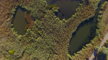 очиститель : Flying over water treatment plants. Sediment with rusty water. aerial survey