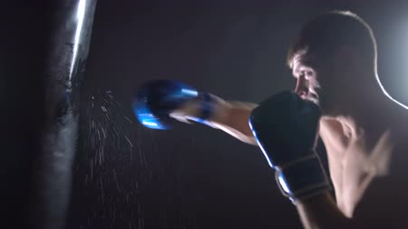 sağlam : The boxer will puncture the boxers pear in wet blue boxing gloves. Black background Stok Video