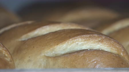 rustik : Fresh Baked Bread at the Bakery Stok Video