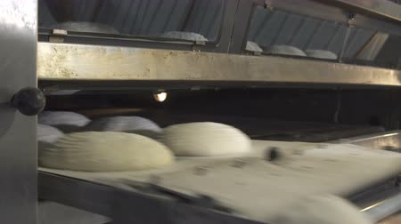pekař : The process of baking bread in the bakery