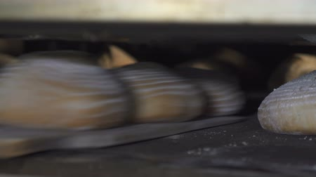 spousta : The process of baking bread in the bakery