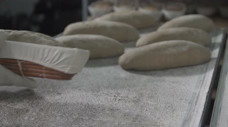 taneli : Baker makes bread dough. slow motion