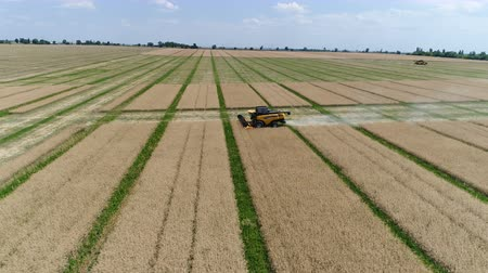 Ukraine, Dnipro - July 4, 2018: Harvester New Holland CX 8.80 collects colza. Aerial