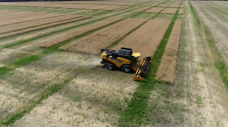repce : Ukraine, Dnipro - July 4, 2018: Harvester New Holland CX 8.80 collects colza. Aerial