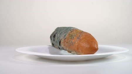 バゲット : Mouldy white bread in a plate rotates in front of the camera 動画素材