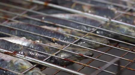 kazık : Fish fried at the stake in a metal grill Stok Video