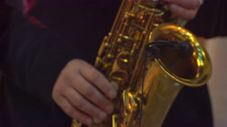 jazzman : Saxophone classical music instrument Saxophonist with alto sax