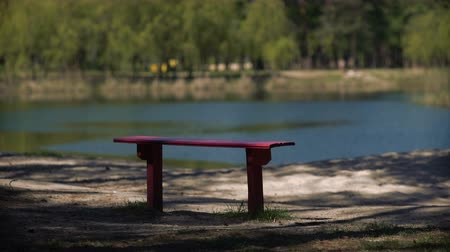 sem nuvens : Benches in the park by the lakeside outdoors