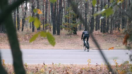 спринт : Cyclist athlete in black helmet and sports sunglasses training on road bicycle in autumn forest. Young fit man cycling on bike outside at autumn. Hard cycling training before competition Стоковые видеозаписи