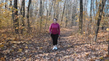 wandelstok : Chubby female doing nordic walking recreational program in autumn park as a part of weight loss program