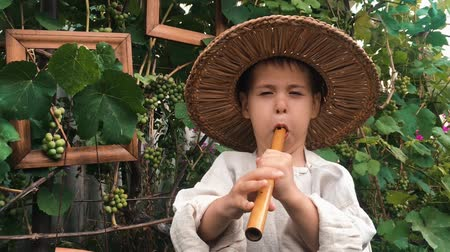 flétna : Portrait of little happy child in straw hat diligently playing a flute. Charming cute? Ountry boy plays on music instrument