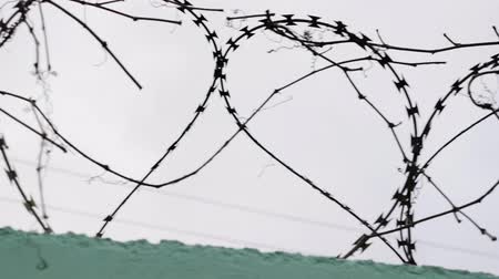 tiltott : Close up view of prison barbed wire. Barbed wire in jail. Fence with barbed wire against gray sky. Stock mozgókép