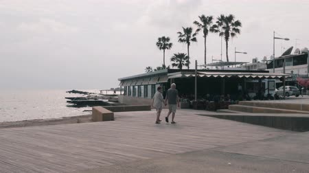 area of port : March, 16, 2019  Cyprus, Paphos. Beautiful view of tourist promenade. Tourists enjoying vacation at beach restaurant. Pier with palms and tourist area. Old happy couple walking along pier.