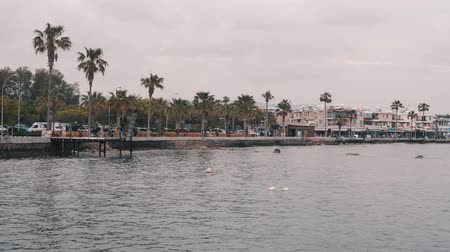 andar : Beautiful view of lively tourist promenade from sea. Beach promenade with palms and cafes. Tourist line with hotels and restaurants. Beautiful quay with tourists walking along beach. Paphos pier.