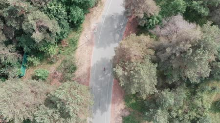 trikot : Aerial drone view of the young attractive triathlete girl in pink sportswear riding her road bike in the park. Triathlon concept. Drone view