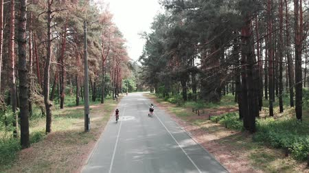 facil : Confident focused attractive woman starts pedaling her road bike on the bicycle path in the park. Cycling concept. Drone view Archivo de Video
