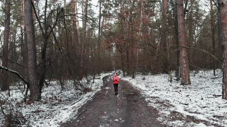 motivováni : Woman running in forest. Motivated concentrated young female jogging in winter park. Professional athlete intense running in the morning. Girl doing daily workouts for loss weight