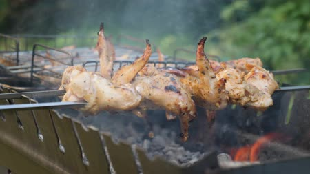 appetizing shish kebab : Fried chicken on charcoal grill. Cooking barbecue meat. Preparing meat in marinade outdoor. Chicken on skewer