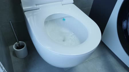 sedes : Water flushing down into the toilet bowl in bathroom. Water being flushed in a toilet bowl. Side view of white toilet with flushed water.
