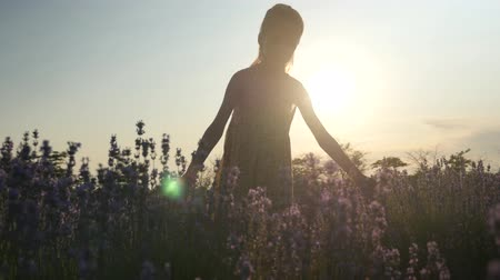 young girl in dress walking in field and touching flowers of lavender at sunset