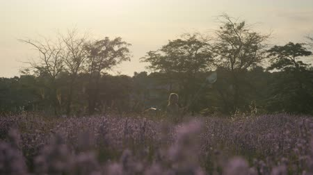 lavanda : young girl running in flower field with net for catching butterflies Vídeos