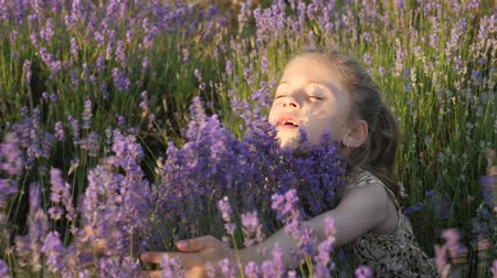 cute little girl hugging bush of lavender flowers on summer sunset