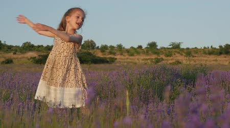 cute little girl playfully dances among beautiful lavender field at sunset Wideo