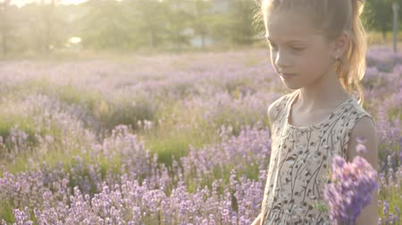 fragrances : little girl collects flowers Stock Footage