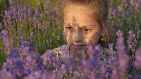 aromaterapia : close up face lovely little girl, field lavender Vídeos