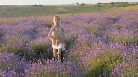 feelings emotions, little girl smile happiness merrily flees jumping outdoors. amazing lavender field. village provence Wideo