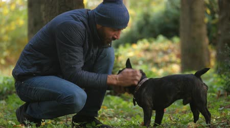 Caucasian man walks in Park with his dog. human friendship with domestic animal. fondle pet, healthy lifestyle