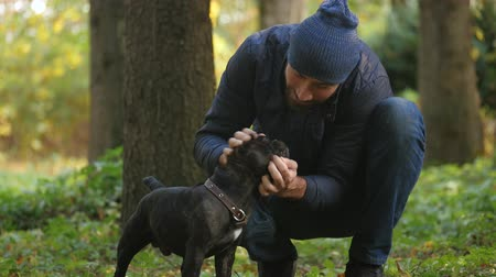 friendship between humans and Pets. man squeezes his dogs muzzle, outdoors in autumn Park
