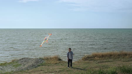 happy little boy with flying colorful kite on the beach, background of the sea summertime