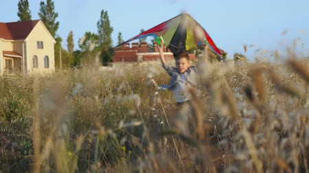 temper : playful cute little boy running with colorful kite in his hands overhead near the house at sunset summertime