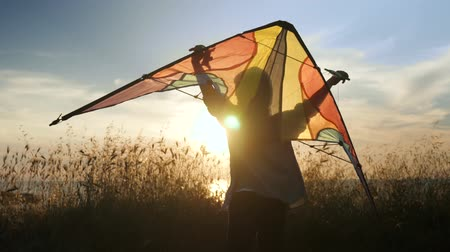 silhouette of little child control flying colorful kites standing in a grass near the beach, concept of flight dreams, light sun glare at sunset, indulge in dreams